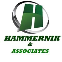 Hammernik & Associates