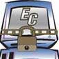 Esser Consulting LLC