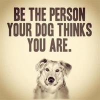 Ozaukee County House And Pet Sitters, LLC.   (AKA OCHAPS)